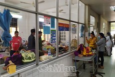 Chưa bố trí được vốn duy tu Bệnh viện Đa khoa tỉnh Cà Mau
