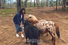 Trải nghiệm thú vị cùng vườn thú Zoodoo