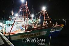 Bắt quả tang mua bán dầu trái phép trên vùng biển Tây Nam