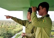 Sớm tham mưu UBND tỉnh lắp đặt hệ thống camera canh lửa rừng