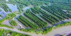 Liên minh nâng cao giá trị tôm sạch Việt Nam