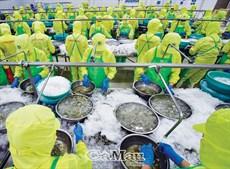 Tăng chất lượng nông sản để xuất khẩu