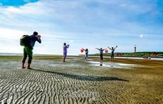 Cồn cát mới ở Mũi Cà Mau