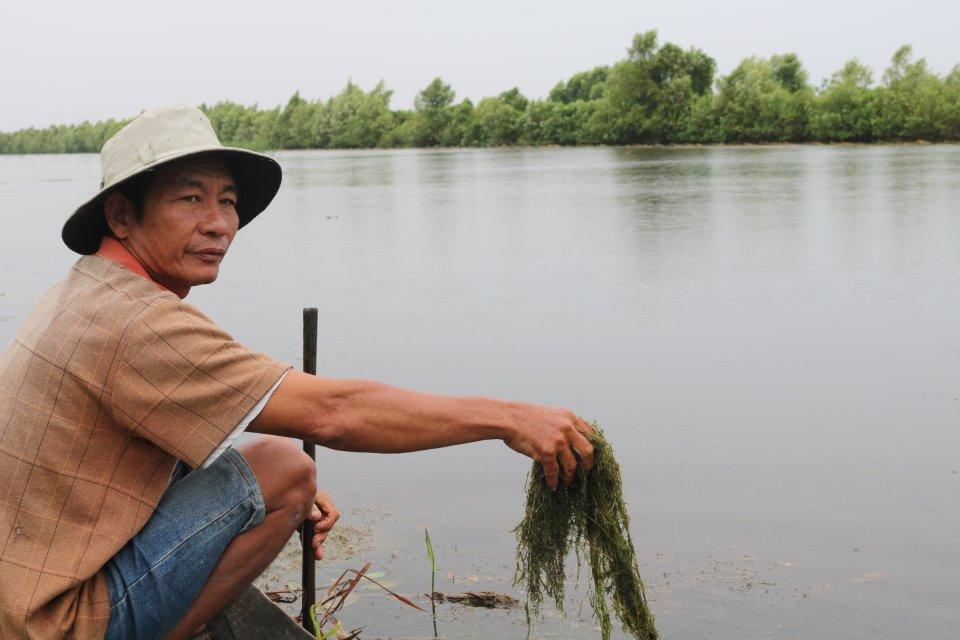 Ông Phạm Hoàng Phương chia sẻ kinh nghiệm cách giữ rong tảo bằng phương pháp thủ công.