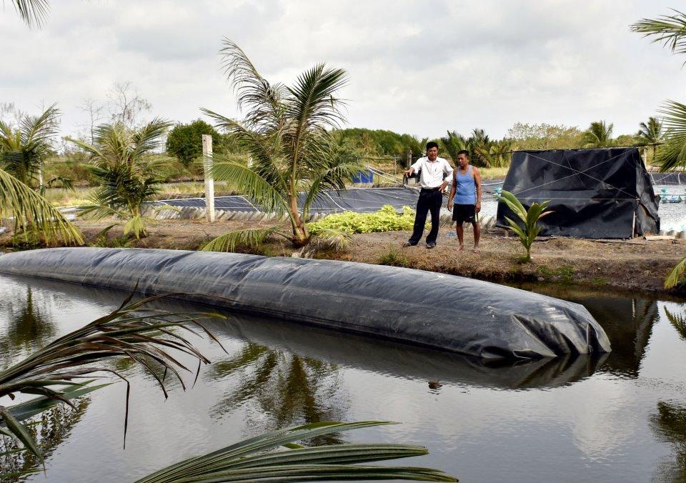 Mô hình xử lý chất thải tôm nuôi siêu thâm canh bằng túi ủ biogas của hộ ông Trần Quốc Việt, ấp Tân Ánh, xã Phú Hưng.