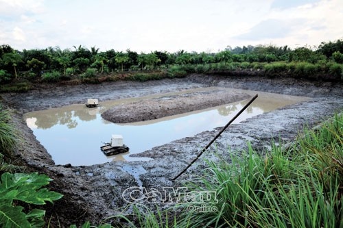 Ao nuôi thường được thiết kế quanh mé lài ra, phần giữa đáy nhô cao để cá lên ăn mồi, cũng như tránh khí độc tích tụ, xung quanh có rãnh để cá tránh trú khi nắng nóng.